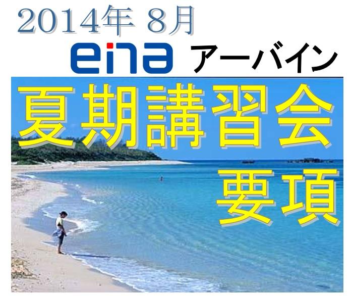 enaIRVINE summer seminar